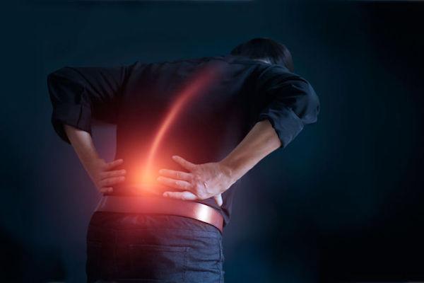 importance de se muscler le dos